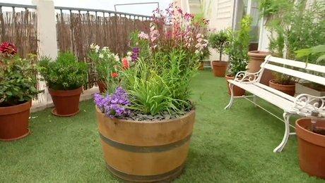 planter des plantes vivaces dans une pot e fleurie. Black Bedroom Furniture Sets. Home Design Ideas