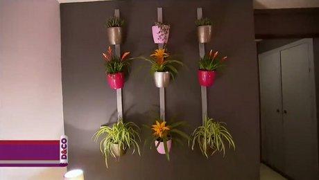 Construire un mur végétal d\'intérieur - Minutefacile.com