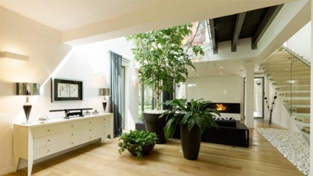 Maison humide solutions et traitements contre l 39 humidit - Plante contre l humidite dans la maison ...